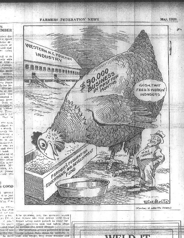 """""""Western N.C. Poultry Industry"""" cartoon"""
