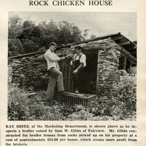 """""""Rock Chicken House"""""""