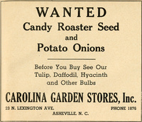 """Wanted Candy Roaster Seed and Potato Onions"""