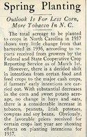 """""""Spring Planting: Outlook is for Less Corn, More Tobacco in N.C."""""""